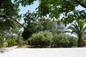 Korali_best prices_in_Hotel_Aegean Islands_Samos_Marathokambos