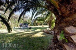 Villa Verde Fenia_lowest prices_in_Villa_Ionian Islands_Lefkada_Tsoukalades