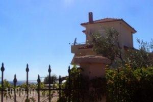 Monopetro_best prices_in_Apartment_Macedonia_Halkidiki_Poligyros