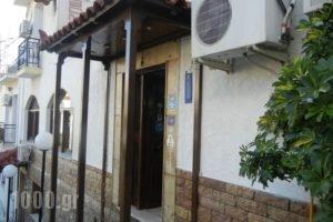 Bonis_lowest prices_in_Hotel_Aegean Islands_Samos_Samos Rest Areas