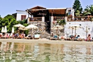 Megali Ammos House_accommodation_in_Hotel_Sporades Islands_Skiathos_Skiathoshora