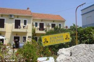 Kyknos_accommodation_in_Apartment_Ionian Islands_Kefalonia_Argostoli