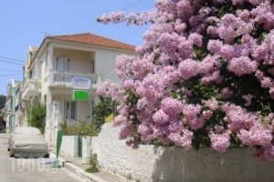 Kyknos_best prices_in_Apartment_Ionian Islands_Kefalonia_Argostoli
