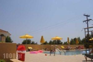 Marinos_best prices_in_Room_Ionian Islands_Kefalonia_Argostoli