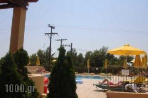 Marinos_lowest prices_in_Room_Ionian Islands_Kefalonia_Argostoli