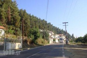 Ionio_accommodation_in_Hotel_Peloponesse_Ilia_Pyrgos
