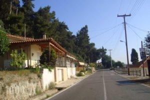Sea View_lowest prices_in_Room_Peloponesse_Ilia_Katakolo