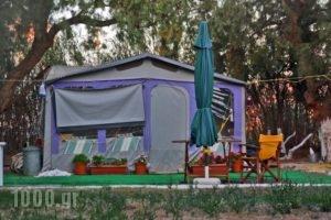 Creta Camping_travel_packages_in_Crete_Heraklion_Gournes