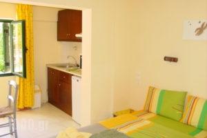 Xenophon Apartments & Studios_holidays_in_Room_Crete_Heraklion_Matala