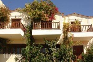 Iliada Studios_accommodation_in_Hotel_Dodekanessos Islands_Karpathos_Karpathosora