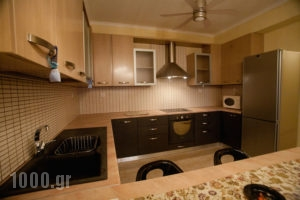 Paradise Villas_best prices_in_Villa_Dodekanessos Islands_Kalimnos_Kalimnos Rest Areas
