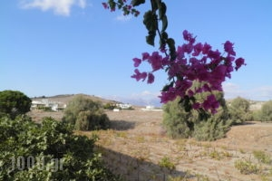 Galaxias Apartments_lowest prices_in_Room_Crete_Heraklion_Tymbaki