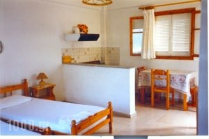 Politis Apartments_accommodation_in_Apartment_Ionian Islands_Ithaki_Ithaki Rest Areas