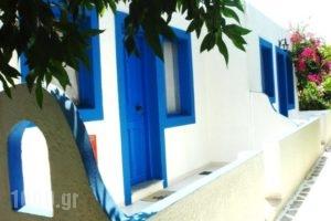 Seaside Studios_best deals_Room_Dodekanessos Islands_Karpathos_Karpathosora