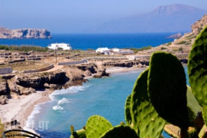Seaside Studios_travel_packages_in_Dodekanessos Islands_Karpathos_Karpathosora
