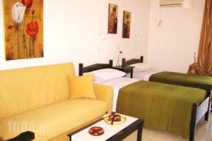 Seaside Studios_best prices_in_Room_Dodekanessos Islands_Karpathos_Karpathosora