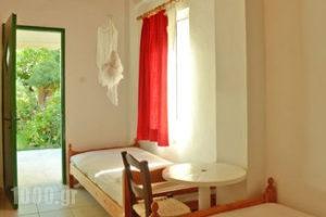Lemonia Zakynthos Studios_best deals_Room_Ionian Islands_Zakinthos_Agios Sostis