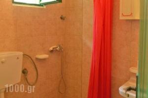 Lemonia Zakynthos Studios_best prices_in_Room_Ionian Islands_Zakinthos_Agios Sostis
