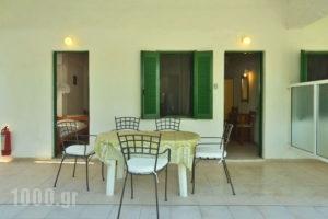 Lemonia Zakynthos Studios_travel_packages_in_Ionian Islands_Zakinthos_Agios Sostis