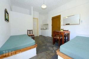 Bellino Apartments_best deals_Room_Crete_Heraklion_Chersonisos
