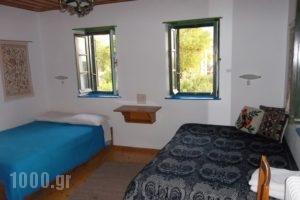 Lakis Rooms_best deals_Room_Epirus_Ioannina_Papiggo