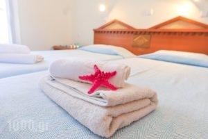 H Kalypso Studios_best deals_Apartment_Dodekanessos Islands_Kalimnos_Kalimnos Rest Areas