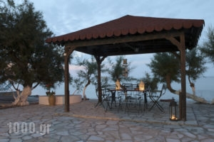 Alisaxni Studios_travel_packages_in_Ionian Islands_Zakinthos_Argasi