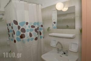 Alisaxni Studios_holidays_in_Apartment_Ionian Islands_Zakinthos_Argasi