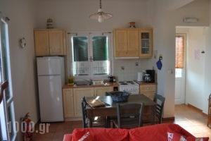 Elea Apartments_accommodation_in_Apartment_Ionian Islands_Ithaki_Ithaki Rest Areas