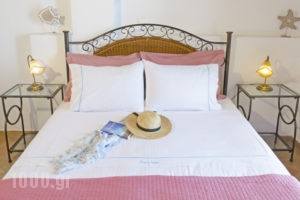 Aspro Mple Studios_holidays_in_Apartment_Dodekanessos Islands_Astipalea_Astipalea Chora