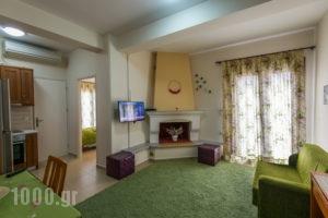 Ilida Kourouta Studios_holidays_in_Room_Peloponesse_Ilia_Kourouta