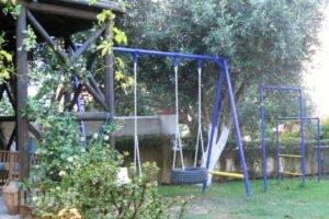 Dimitra Family Hotel_best deals_Apartment_Peloponesse_Ilia_Skafidia