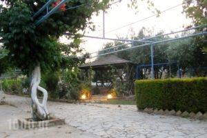Dimitra Family Hotel_accommodation_in_Apartment_Peloponesse_Ilia_Skafidia