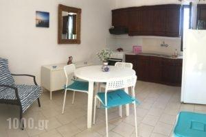 Villa Rania_accommodation_in_Villa_Ionian Islands_Zakinthos_Zakinthos Rest Areas