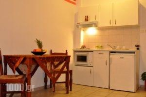 Haris Apartments_holidays_in_Apartment_Crete_Heraklion_Chersonisos