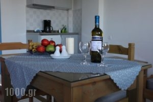 Amalthia Apartments_best prices_in_Apartment_Crete_Heraklion_Chersonisos